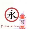 Bio Kombucha Frutas 033 PET