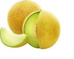 Melon Galia OFERTA